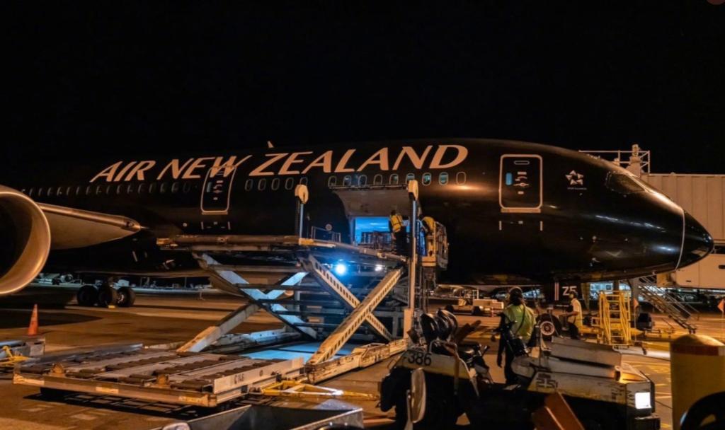 Air New Zealand 787 All Blacks Carga Xangai