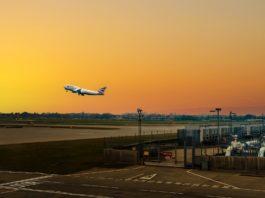 flight dawn sunset flying